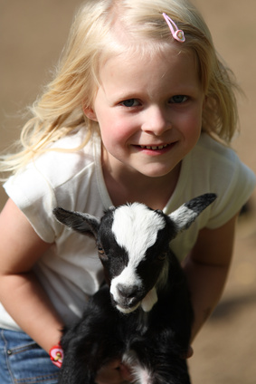 Easter Gift Ideas and Activities for Kids: A Visit to the Petting Zoo